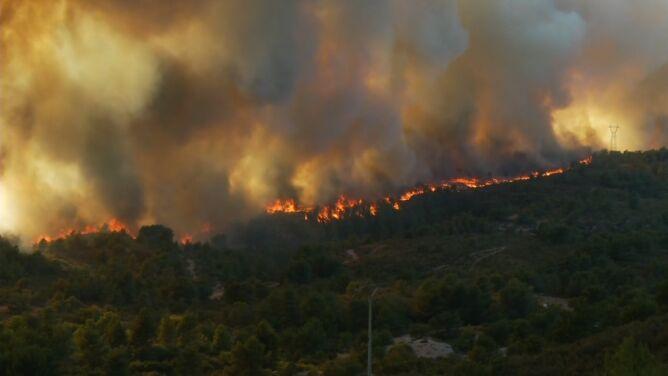 Pożary na południu Francji. <br />Policja nie wyklucza podpalenia