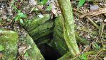 W meksykańskiej dżungli odkryto dwa miasta Majów (ZRC SAZU)
