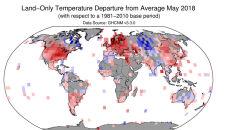 Odchylenia od średniej temperatury w maju (średnią wyliczono na podstawie danych z lat 1981-2010) (NOAA)